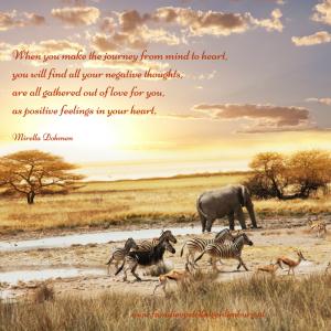 journey elephant